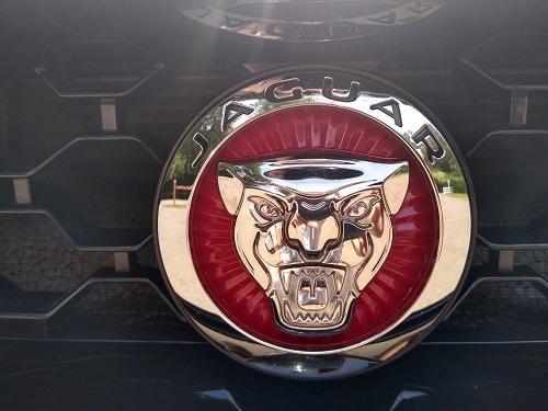 Jaguar mærke