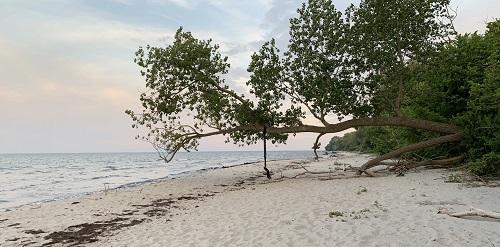 Ulslev Strand på Falster