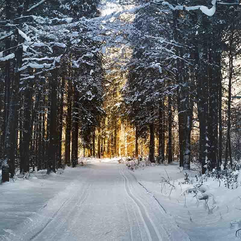 Vinterkørsel vej